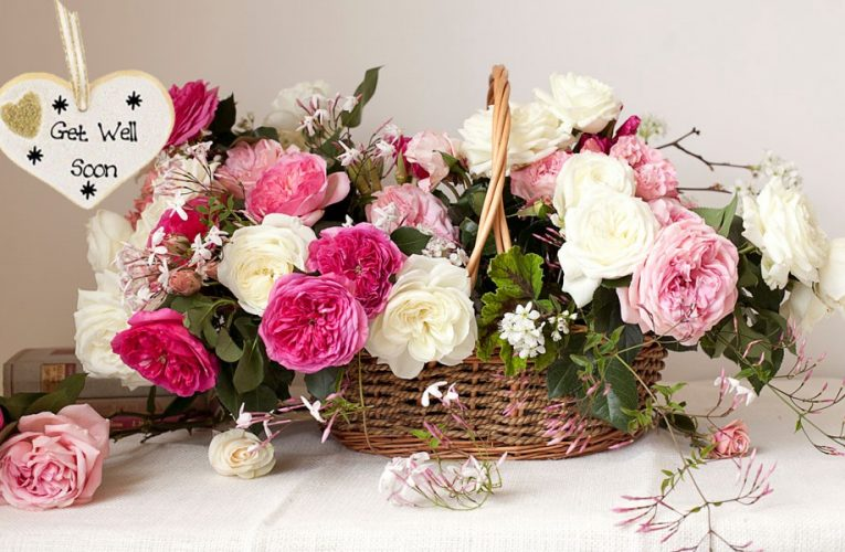 8 Get Well Soon Flowers that are having medicinal Benefits